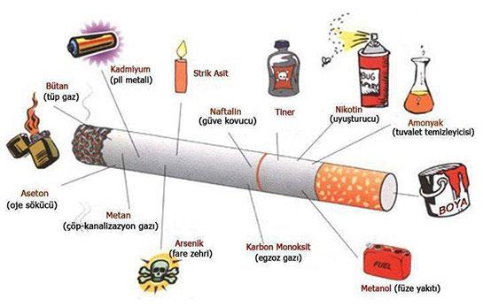 Çocuklarda Sigara Alışkanlığına Önlemler ile ilgili görsel sonucu